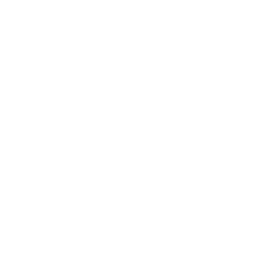 Aleksandra Chomik Logo